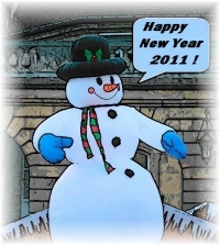 Happy New Year 2011.jpg