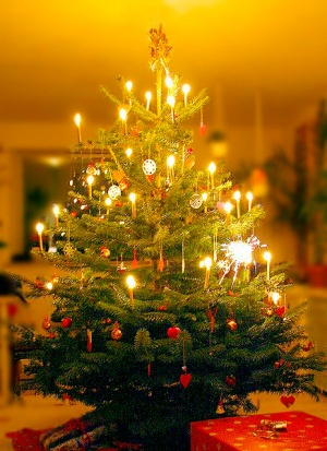 Kerstboom Wikisage